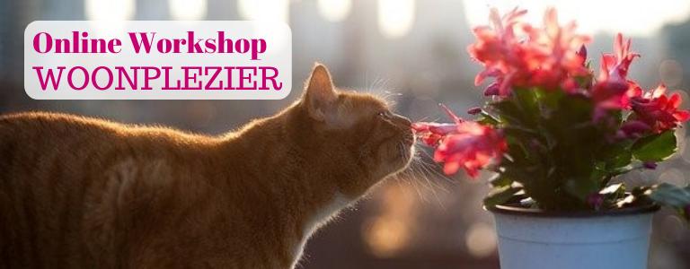 Gratis online workshops over woonplezier